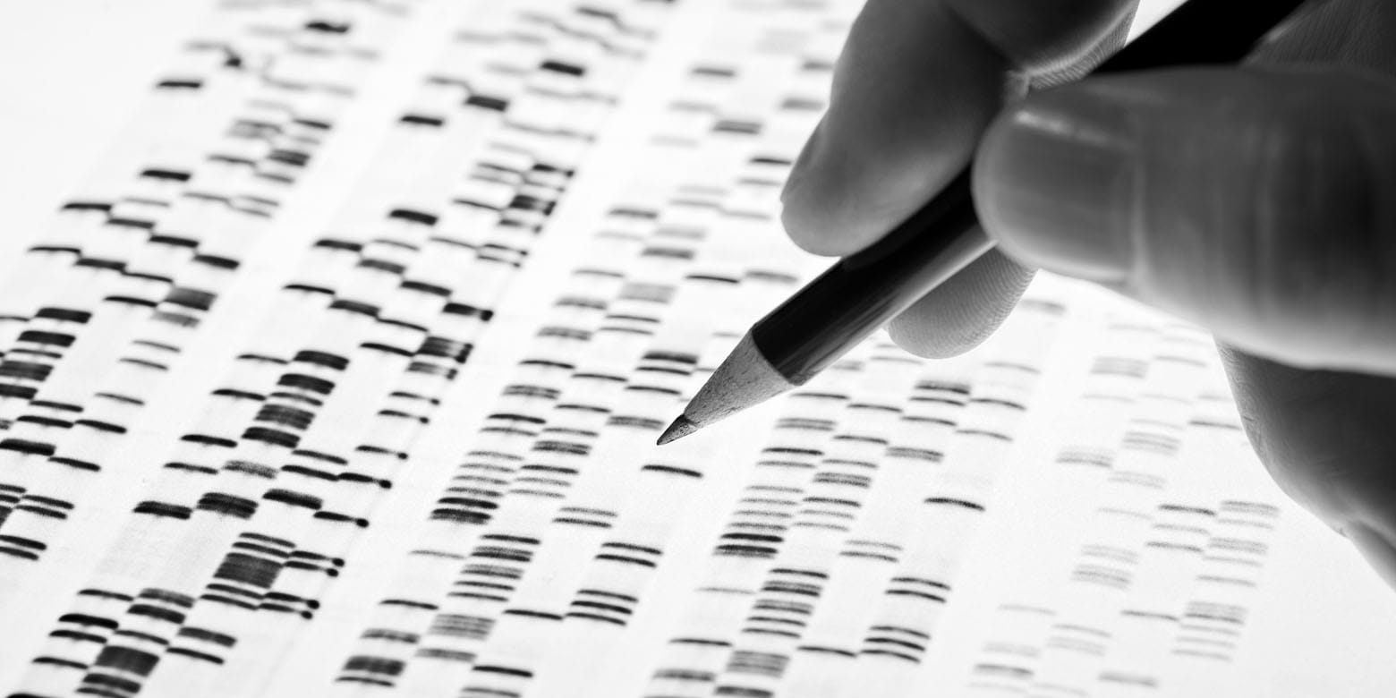 A scientist reviewing DNA markers